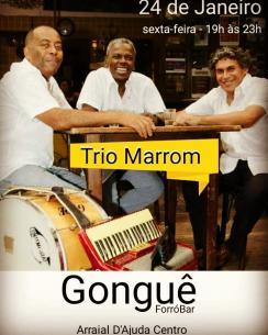 panfleto Trio Marrom